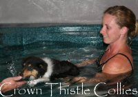 Hannah swimming one of our rough collie pups while being filmed for Animal Planet